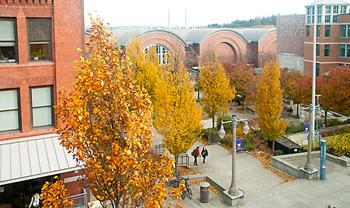 2010Aut_Fall-horizontal UW Tacoma